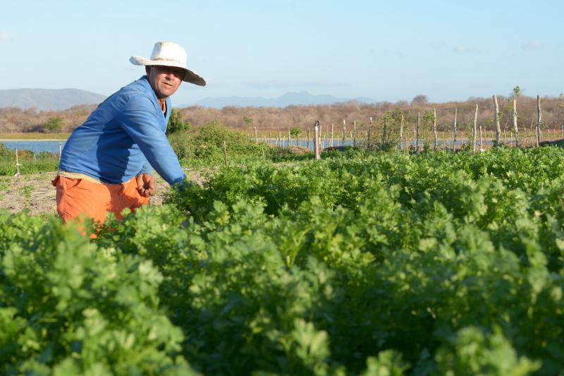 """O financiamento é destinado a vários projetos do Programa Nacional de  Fortalecimento da Agricultura Familiar (Pronaf). """"Este crédito abre  oportunidades para ... 8ae7dc2de39c3"""